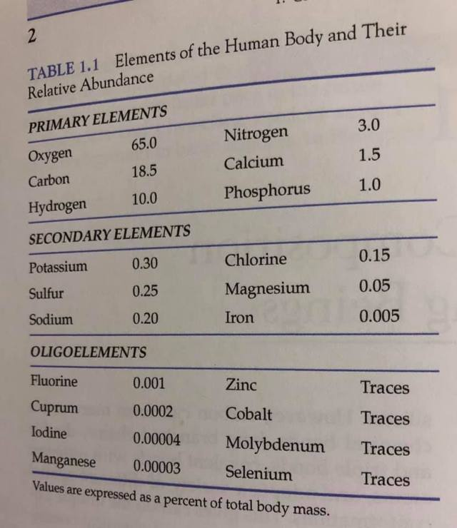 body mineral levels